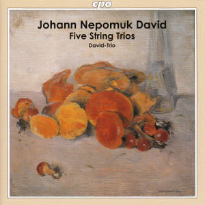 Johann Nepomuk David, Five String Trios